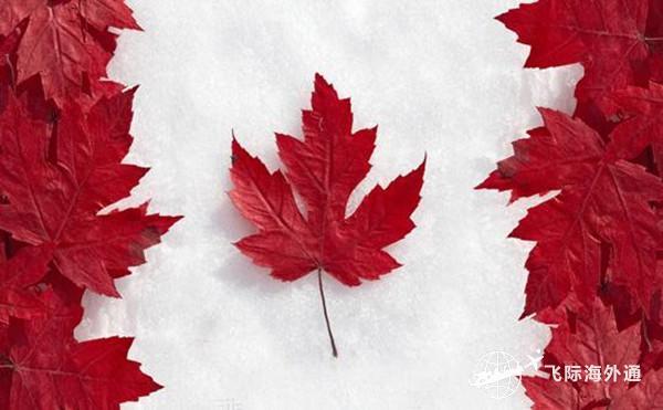2021加拿大移民申请条件