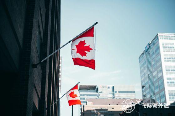 加拿大移民拒签率剧增,为啥反而成为你申请加拿大移民的机会