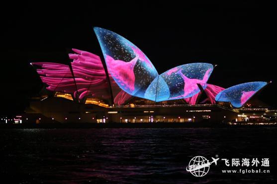 为什么多华人选择移民澳洲,移民澳洲可以享受哪些澳洲育儿福利