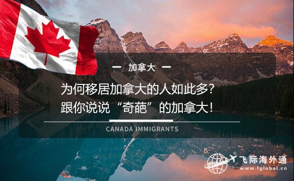 """为何移居加拿大的人如此多?跟你说说""""奇葩""""的加拿大!"""
